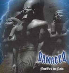 Purified in Pain - CD / Album - Music