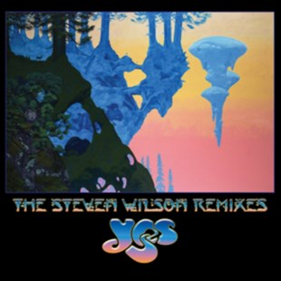 "The Steven Wilson Remixes - Vinyl / 12"" Album Box Set by  (0081227934019) - Vinyl - Music Rock"