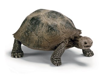 Schleich - Giant Turtle