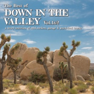 The Best of Down in the Valley - CD / Album - Music R&B