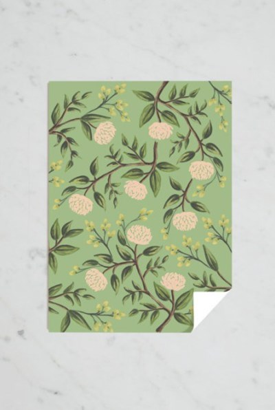 Rifle Paper Co - Single Wrapping Sheet - Emerald Peonies