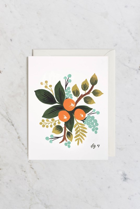 Rifle Paper Co - Single Card - Botanical - Clementine (fig.4)