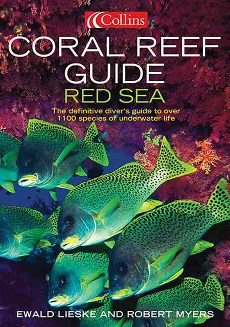 Collins Coral Reef Guide Red Sea