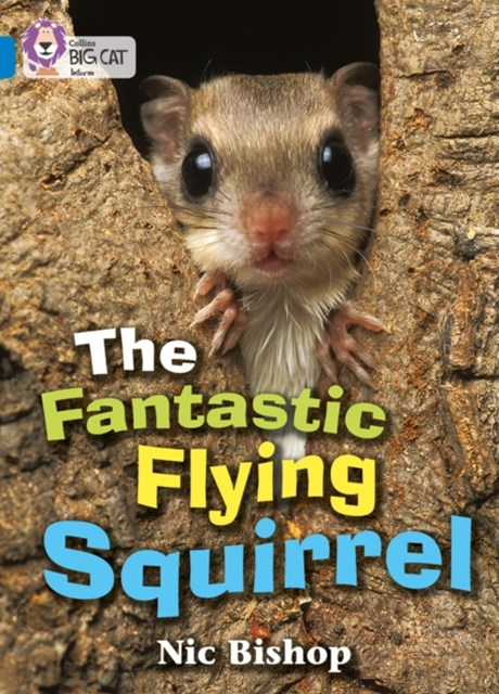 Fantastic Flying Squirrel
