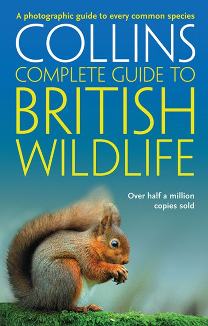 Complete British Guides Collins Complete Guide To British Wildlife: A photographic guide to every common species