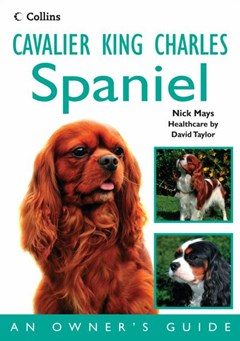 Cavalier King Charles Spaniel: An Owner
