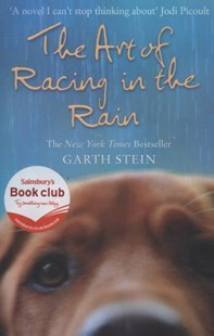 The Art Of Racing In The Rain by Garth Stein (9780007281190) - PaperBack - Modern & Contemporary Fiction General Fiction