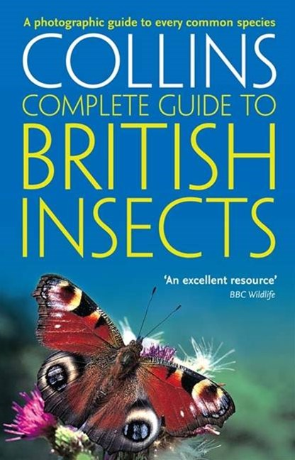 Collins Complete Guide to British Insects: A Photographic Guide to EveryCommon Species