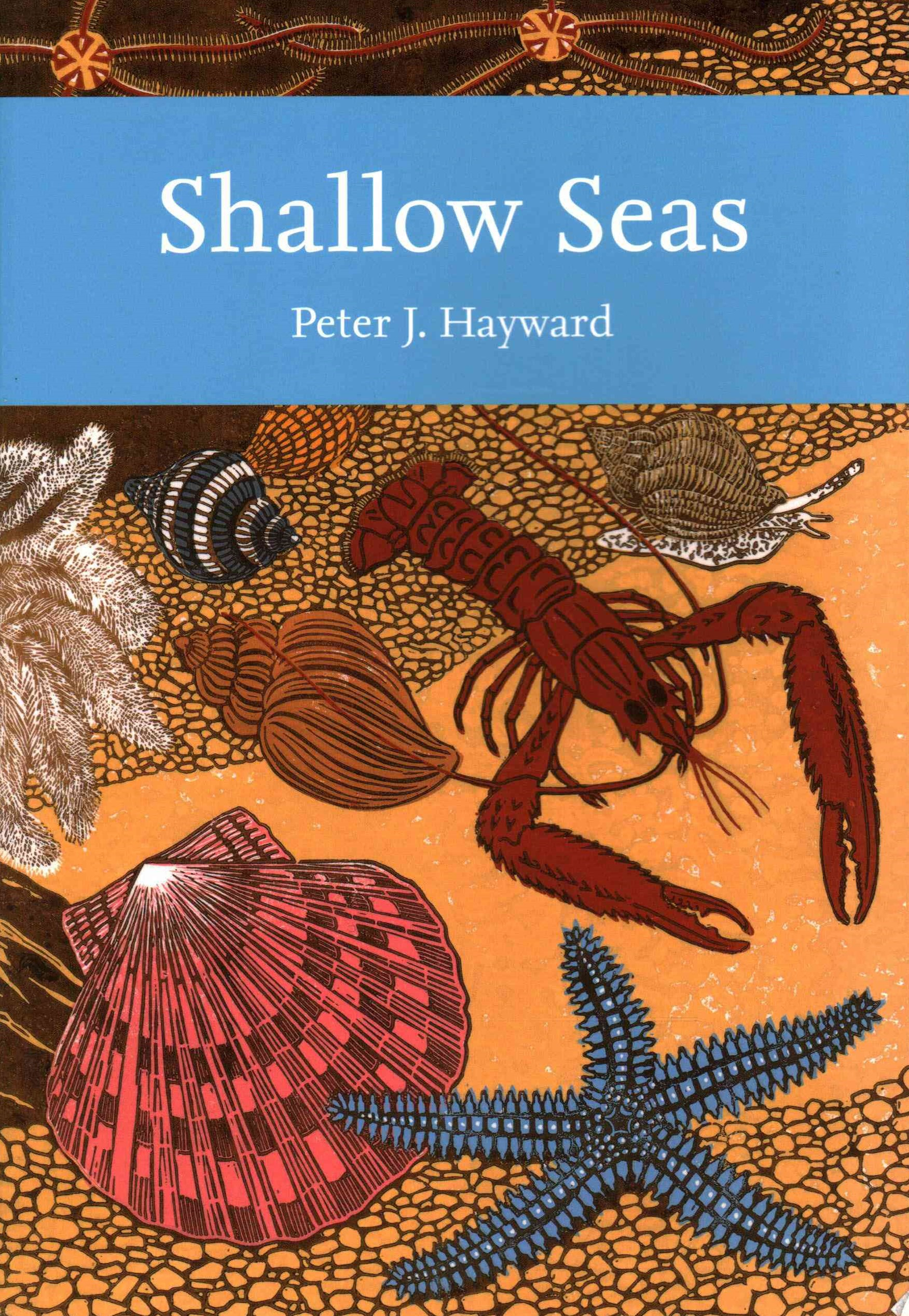 Collins New Naturalist Library: Shallow Seas