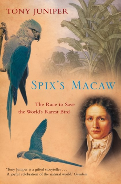 (ebook) Spix's Macaw: The Race to Save the World's Rarest Bird (Text Only)
