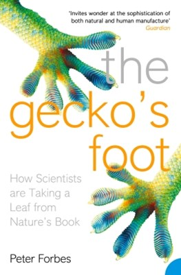 The GeckoGÇÖs Foot: How Scientists are Taking a Leaf from Nature's Book