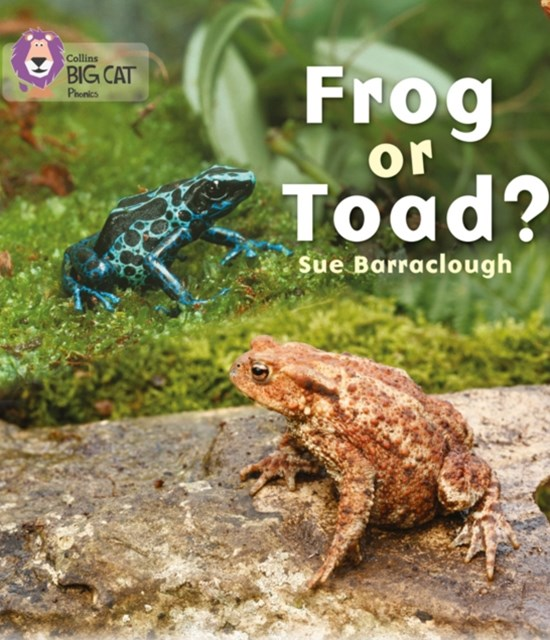 Frog or Toad?