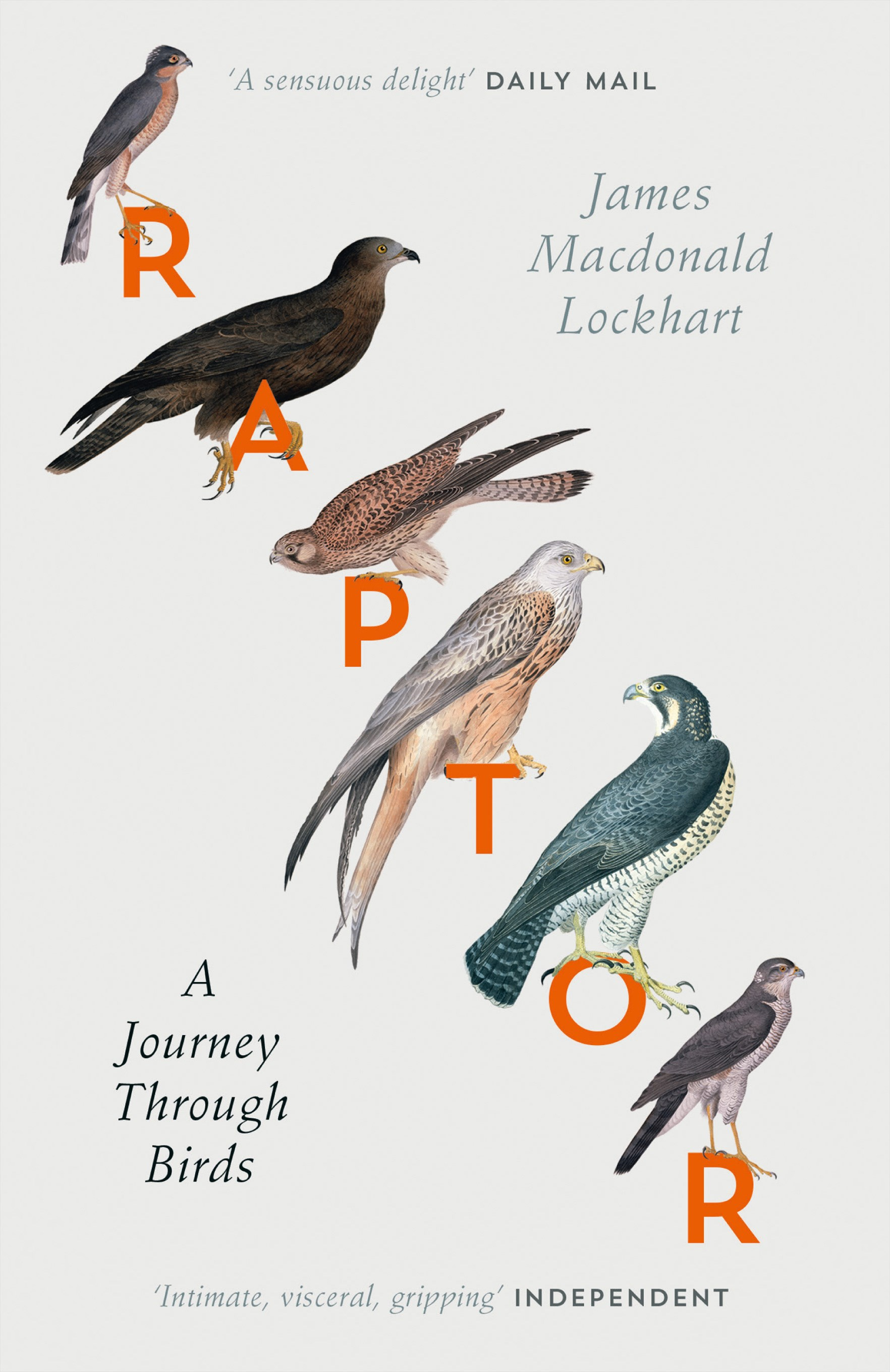 Raptors: A Journey Through Birds