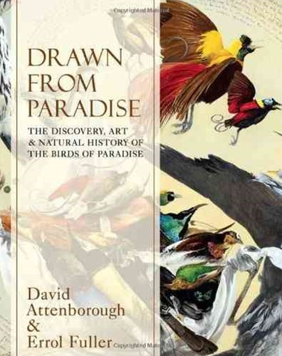 Drawn From Paradise: The Discovery, Art and Natural History of the BirdsOf Paradise
