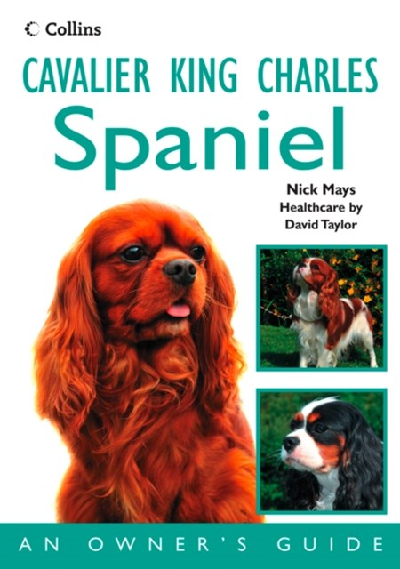 Cavalier King Charles Spaniel: An OwnerGÇÖs Guide