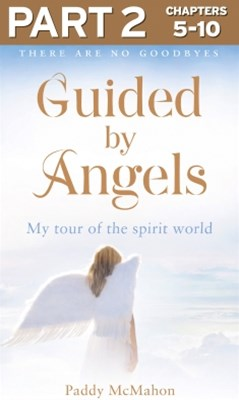 (ebook) Guided By Angels: Part 2 of 3: There Are No Goodbyes, My Tour of the Spirit World