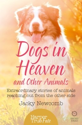 Dogs in Heaven: and Other Animals: Extraordinary stories of animals reaching out from the other sid