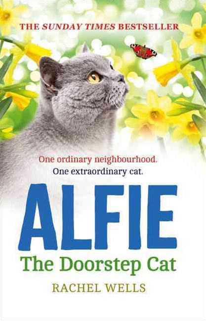 Alfie the Doorstep Cat