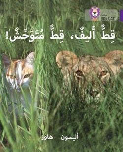 Tame Cat, Wild Cat by Alison Hawes (9780008156473) - PaperBack - Non-Fiction Animals