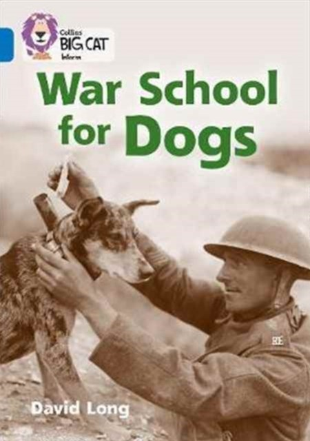 War School for Dogs
