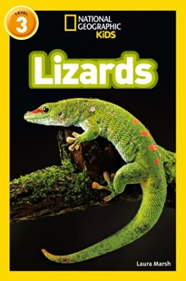 Lizards by Laura Marsh (9780008266738) - PaperBack - Non-Fiction Animals