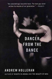 Dancer from the Dance by Andrew Holleran, Andrew Holleran (9780060937065) - PaperBack - Modern & Contemporary Fiction General Fiction