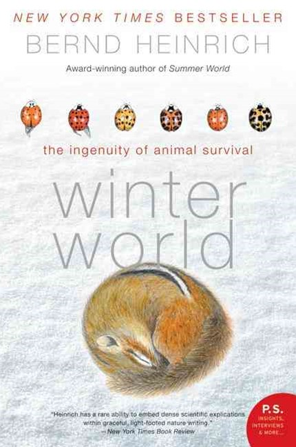 Winter World: The Ingenuity of Animal Survivor