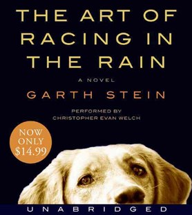The Art of Racing in the Rain - Modern & Contemporary Fiction General Fiction
