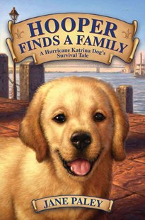 Hooper Finds a Family: A Hurricane Katrina Dog's Rescue Tale by Jane Paley (9780062011039) - HardCover - Children's Fiction Older Readers (8-10)