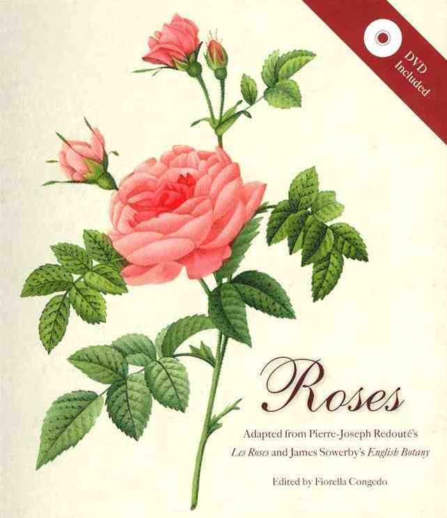 Roses Mini Archive with DVD