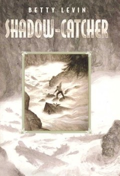 Shadow-Catcher