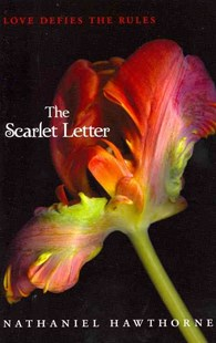 The Scarlet Letter by Nathaniel Hawthorne (9780062066022) - PaperBack - Children's Fiction Classics