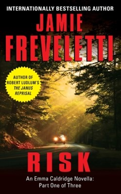 (ebook) Risk