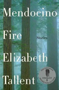 Mendocino Fire by Elizabeth Tallent (9780062410351) - PaperBack - Modern & Contemporary Fiction Short Stories