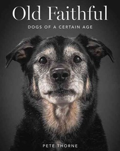 Old Faithful: Dogs of a Certain Age by Pete Thorne (9780062413451) - HardCover - Art & Architecture Photography - Pictorial