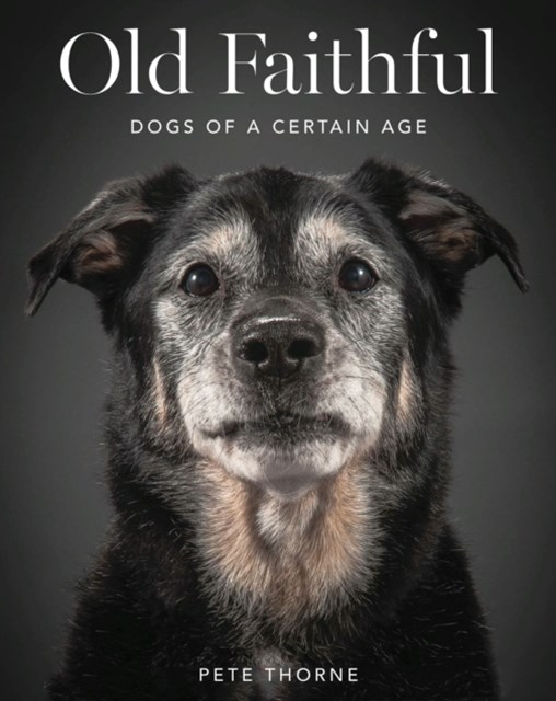 (ebook) Old Faithful