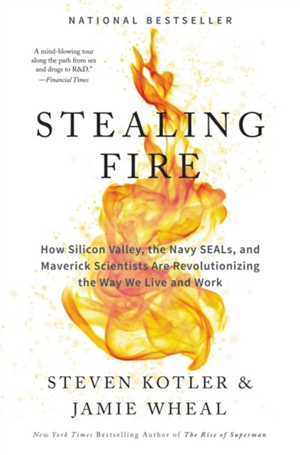 (ebook) Stealing Fire