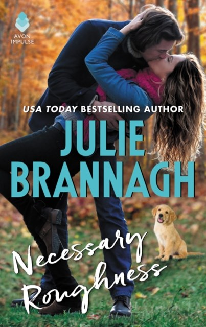 (ebook) Necessary Roughness