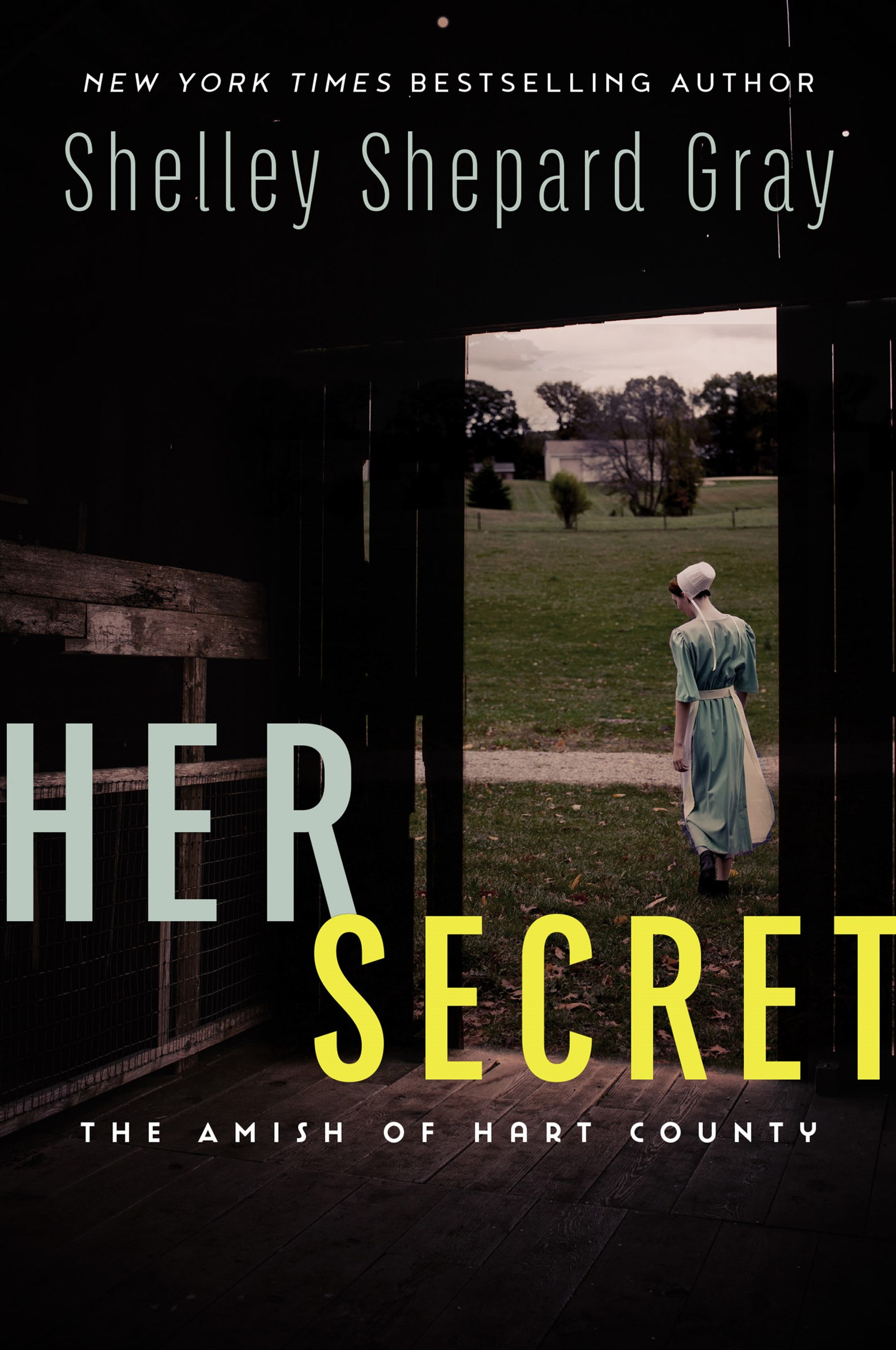Her Secret: The Amish of Hart County
