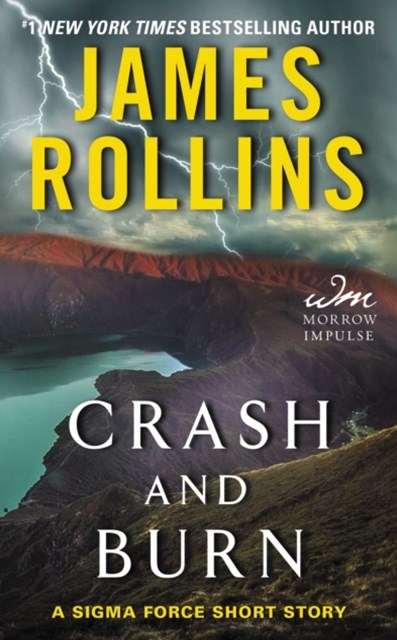 (ebook) Crash and Burn