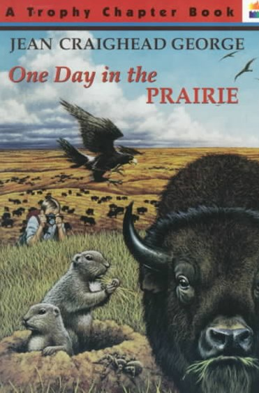 One Day in the Prairie