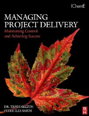 Managing Project Delivery: Maintaining Control and Achieving Success