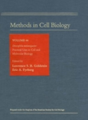 Drosophila melanogaster: Practical Uses in Cell and Molecular Biology