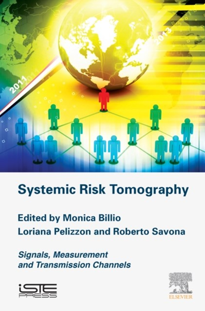 Systemic Risk Tomography