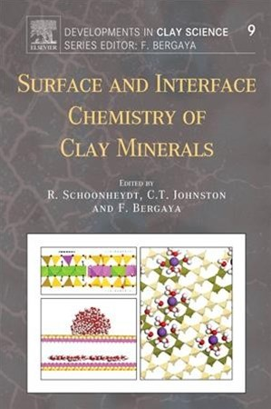 Surface and Interface Chemistry of Clay Minerals