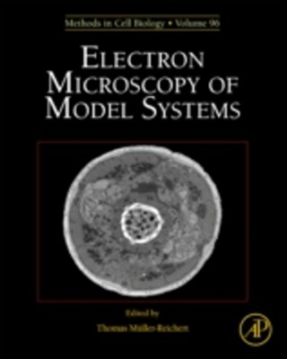 Electron Microscopy of Model Systems