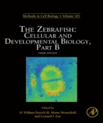 Zebrafish: Cellular and Developmental Biology, Part B