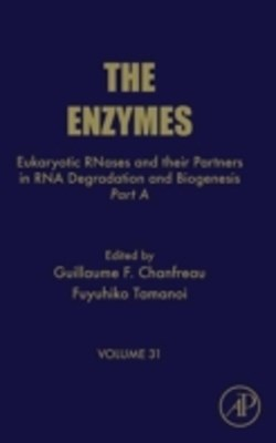 Eukaryotic RNases and their Partners in RNA Degradation and Biogenesis