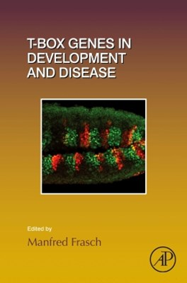T-box Genes in Development and Disease