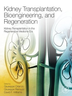 Kidney Transplantation, Bioengineering, and Regeneration
